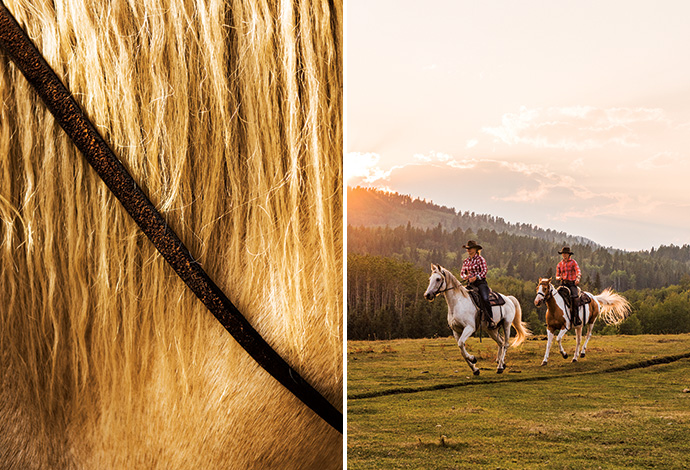 Horse mane, Moose Mountain Horseback Adventures; Undine MacLaine and guide Louella Wright